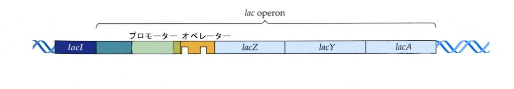 6LAC2