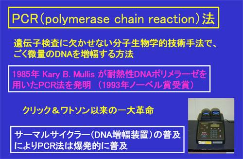 Dr.Gelo-CLUB *examine & treat*「PCR法」タグアーカイブ分子生物学~DNA複製Tagsこのサイトについてカテゴリー最近の投稿人気メニュー